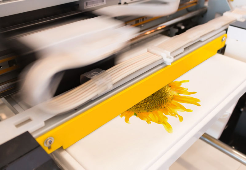 Printer-sunflower