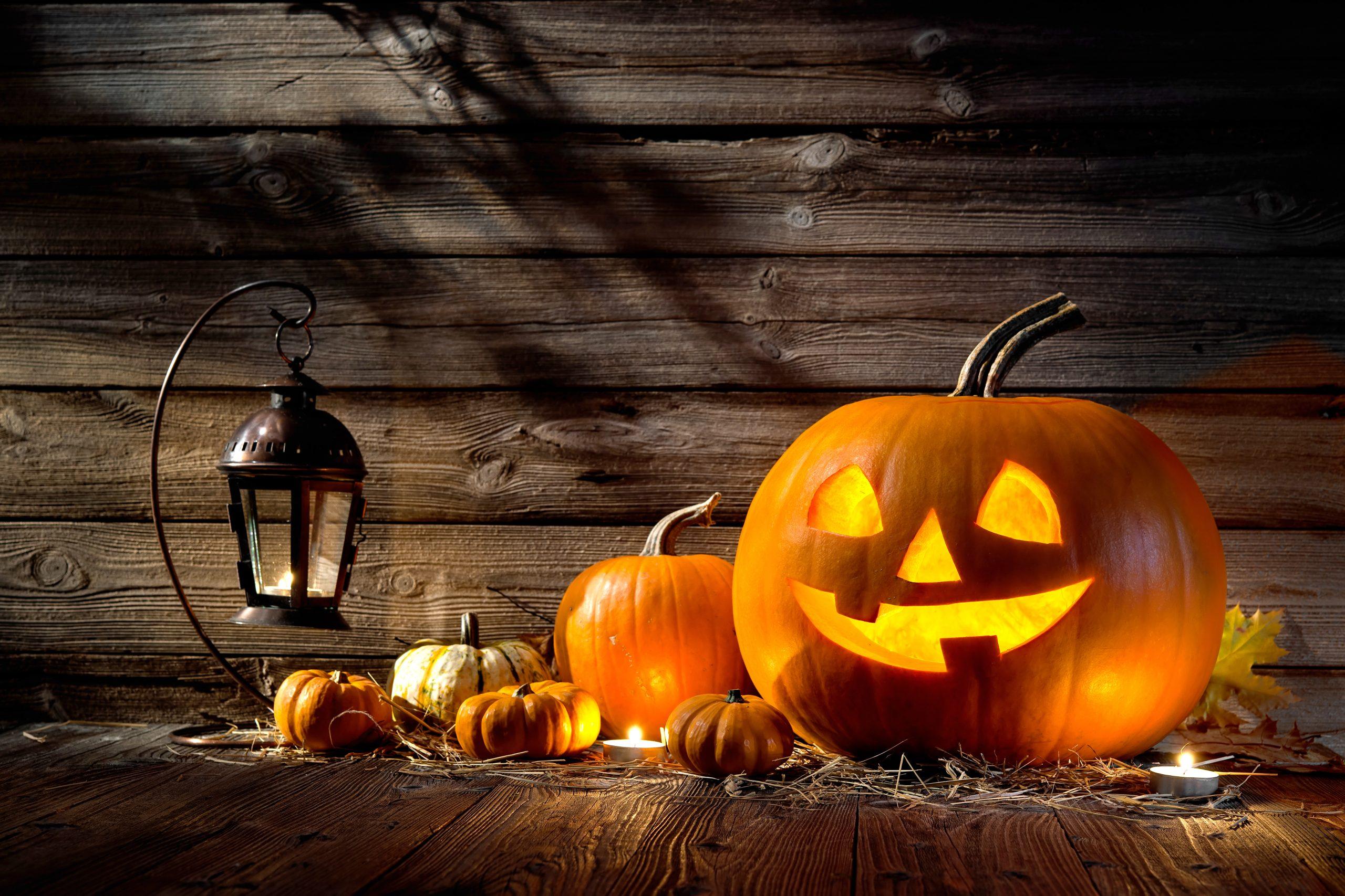 Halloween-Pumpkins-2020-scaled