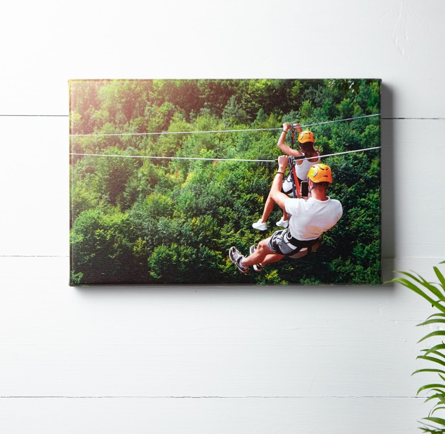 canvas on a wall